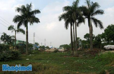 Huyen Me Linh: Du an duong 35 cham tien do do vuong mat bang - Anh 1