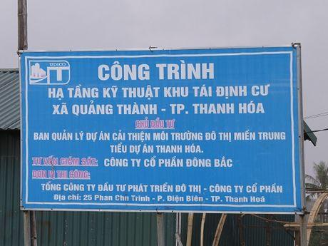 "Thanh Hoa: Du an hang tram ti tro thanh noi chan tha trau bo, ""bay"" nguoi dan - Anh 2"