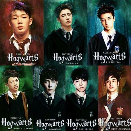 Phan loai cac idol Kpop khi gia nhap the gioi phu thuy 'Harry Potter' - Anh 8