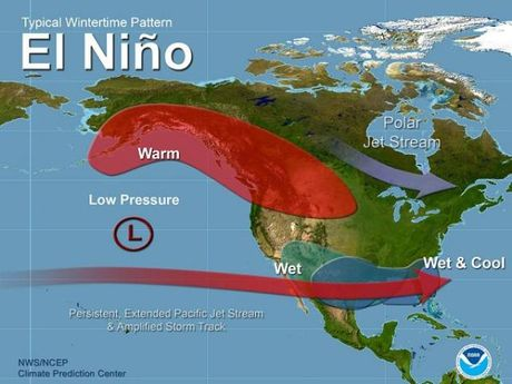 Sua... El Nino va Canh cua - moc nhi: Khong dang ngac nhien! - Anh 2