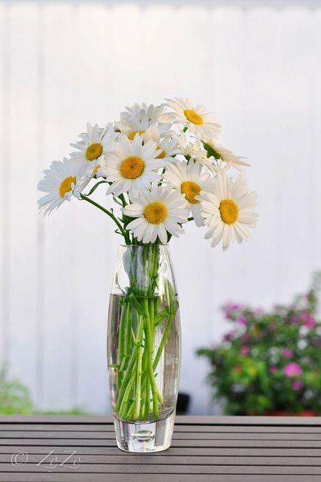 Nhung cach cam hoa cuc hoa mi dep diu dang - Anh 1