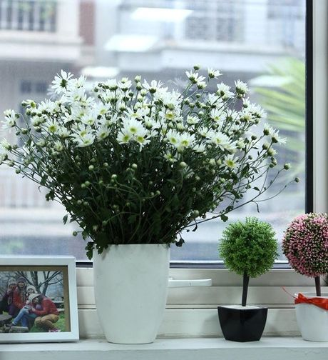 Nhung cach cam hoa cuc hoa mi dep diu dang - Anh 2