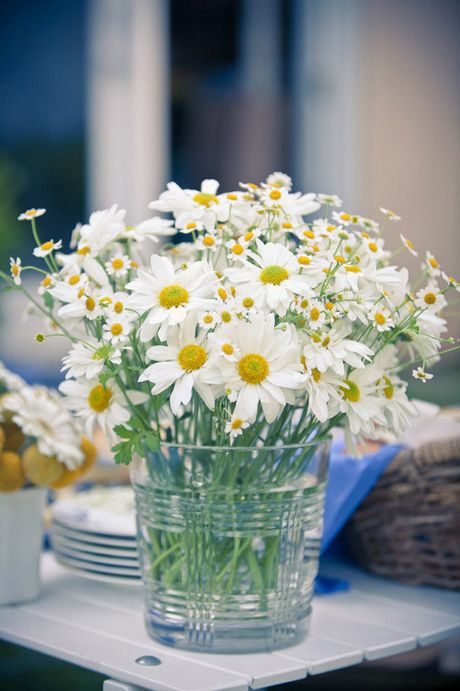 Nhung cach cam hoa cuc hoa mi dep diu dang - Anh 3