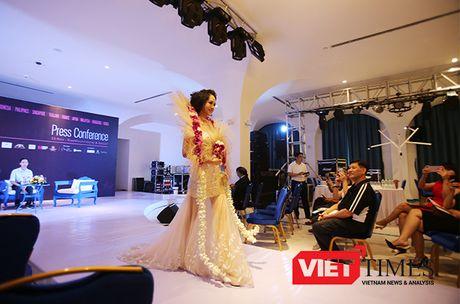 Da Nang lan dau tien to chuc trinh dien 'Hoa Nghe Thuat Quoc Te Da Nang 2016' - Anh 1
