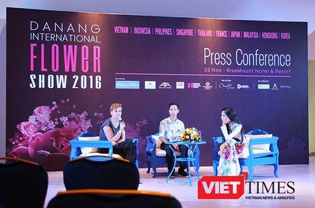 Da Nang lan dau tien to chuc trinh dien 'Hoa Nghe Thuat Quoc Te Da Nang 2016' - Anh 2
