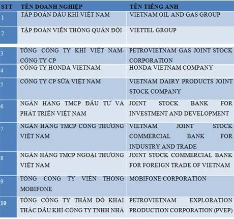 Bac 1000 doanh nghiep nop thue lon nhat Viet Nam do chua duoc kiem chung - Anh 3