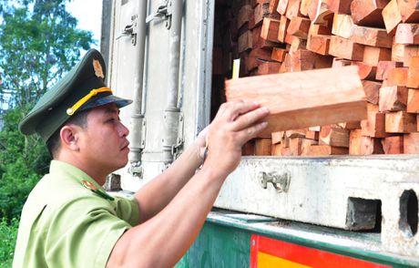 Tam giu xe container cho hang chuc tan lam san quy hiem - Anh 2