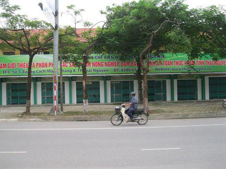 Chuyen that nhu dua: 'Tung chuong' voi doan kiem tra an toan thuc pham - Anh 1