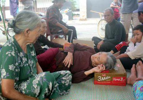 Nha may thep ngan ty: Quang Nam khen chu dau tu - Anh 2