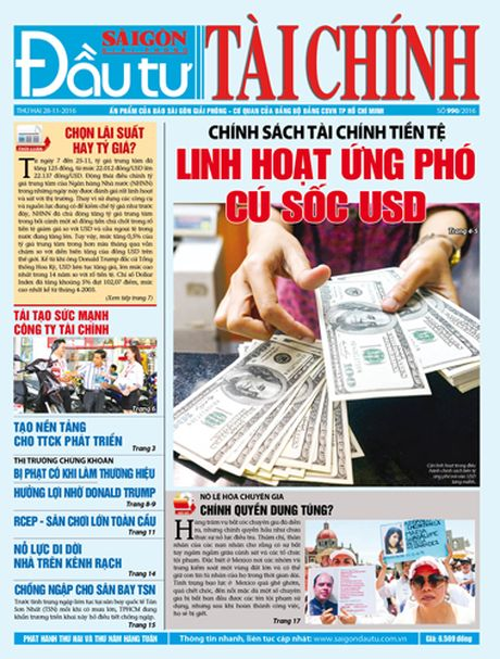 Don doc DTTC phat hanh sang thu hai 28-11 - Anh 1