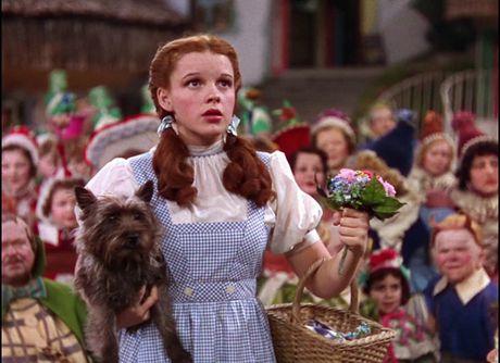 """Tai sao Donald Trump nen xem """"The Wizard of Oz"""" - Anh 3"""