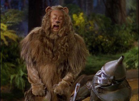 """Tai sao Donald Trump nen xem """"The Wizard of Oz"""" - Anh 6"""
