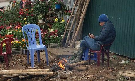 Chum anh Ha Noi ret dau dong - Anh 3