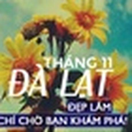 Dong sang, cai tinh khoi nhuom trang dat troi - Anh 9