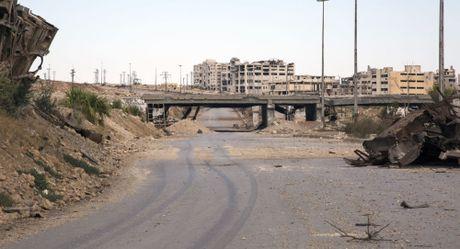 Nga bi mat dua hon 3 tan hang vien tro nhan dao den Aleppo - Anh 1