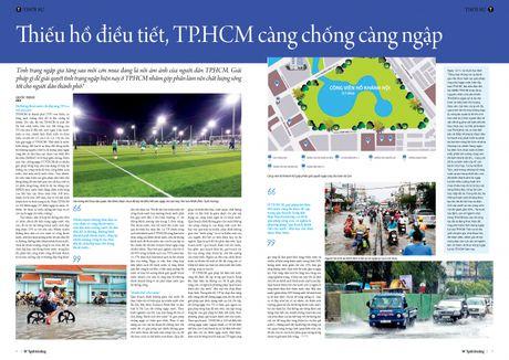 Thieu ho dieu tiet, TP.HCM cang chong cang ngap - Anh 6