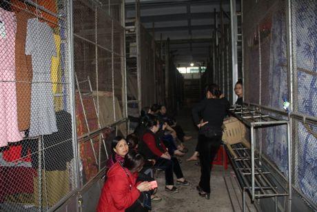 Ha Tinh: Hang tram tieu thuong ngung kinh doanh de bai thi - Anh 3