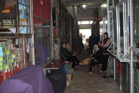 Ha Tinh: Hang tram tieu thuong ngung kinh doanh de bai thi - Anh 5