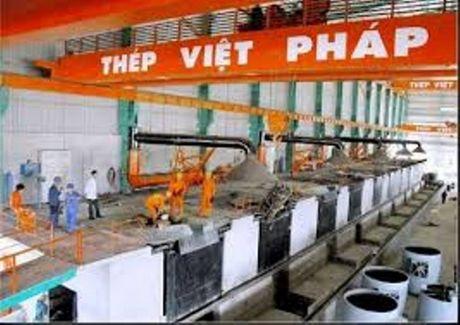 Xay ra su co ve moi truong, thep Viet Phap phai ngung du an - Anh 1