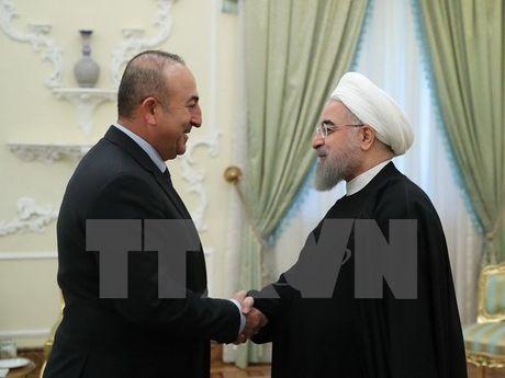 Iran muon hop tac voi Tho Nhi Ky giai quyet van de Iraq va Syria - Anh 1