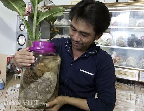 Ky tich san duoc o vu nang ngan con o bien Hoang Sa - Anh 3