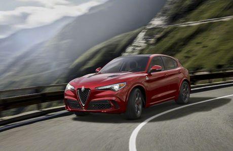 Alfa Romeo Stelvio: Buoc dot pha thi truong crossover - Anh 2