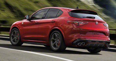 Alfa Romeo Stelvio: Buoc dot pha thi truong crossover - Anh 3