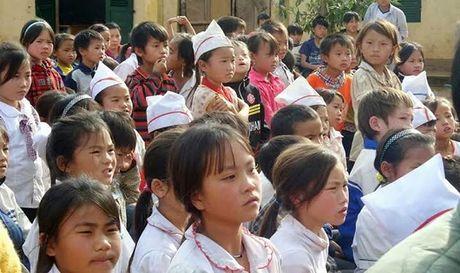 Ap luc hoc sinh tieu hoc: Khong phai diem so ma la benh thanh tich - Anh 1