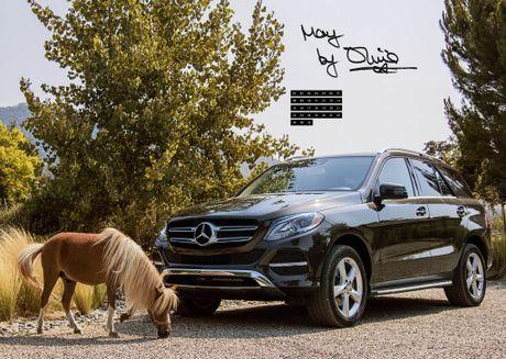 Mercedes lay long chi em qua anh lich 2017 'She's Mercedes' - Anh 7