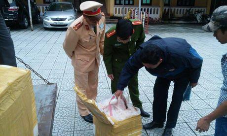 Thua Thien – Hue: Phat hien 1300kg noi tang dong vat khong ro nguon goc - Anh 1