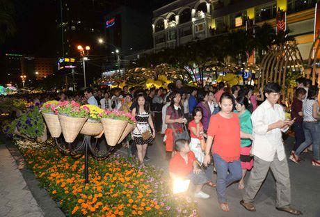 Duong hoa Nguyen Hue khai mac toi 25.1.2017 - Anh 1