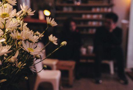 Cuc hoa mi dep nao long trong gio lanh dau dong - Anh 9