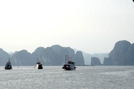 Huyen ao thien cung dong o ky quan the gioi vinh Ha Long - Anh 5
