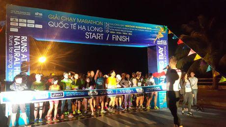 800 VDV tu 33 quoc gia tranh tai tai Giai Marathon Quoc te Ha Long 2016 - Anh 1