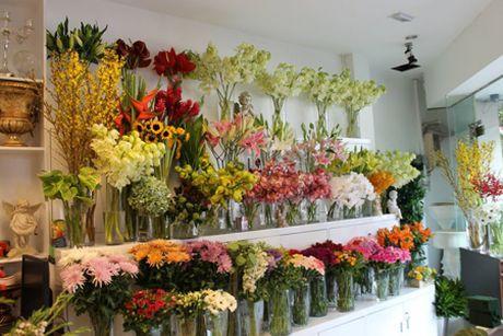 5 kinh nghiem mo shop hoa gia BAN HET SACH truoc Tet Nguyen Dan - Anh 3