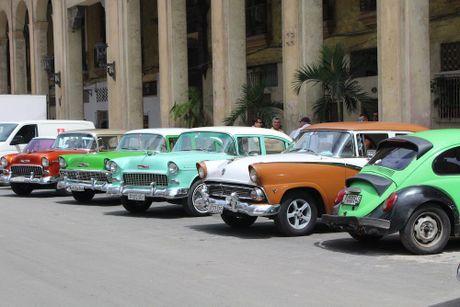 Di san khong the thay the cua Fidel Castro o Cuba - Anh 3