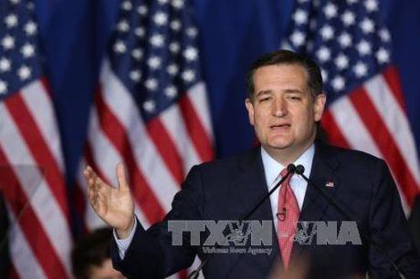 Thuong nghi sy Ted Cruz canh bao ong Trump ve kha nang bao loan - Anh 1