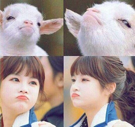 Sao Han 28/11: Hani ghen ty voi em ut EXID, Park Seo Joon cat toc nam tinh - Anh 7
