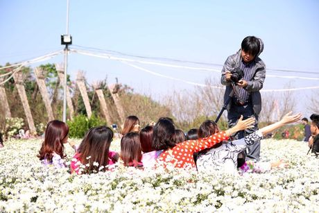 Diem chup anh voi vuon cuc hoa mi no ro tuyet dep o Ha Noi - Anh 7