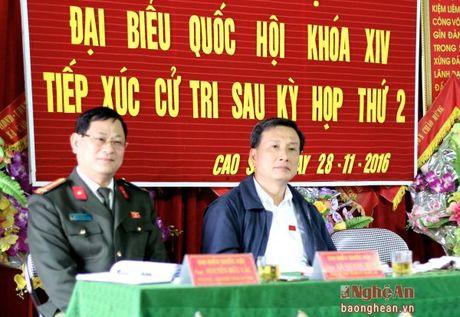 Cu tri Anh Son: Can co chinh sach ho tro xay dung thuong hieu san pham dia phuong - Anh 1
