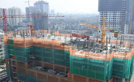 Phuc Hung Holdings tra co tuc 10% bang tien mat - Anh 1