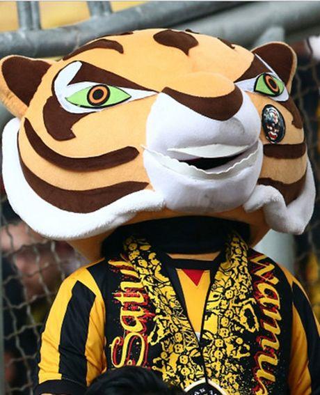 Chum anh: Nhung CDV cuong nhiet nhat tai AFF Cup 2016 - Anh 7