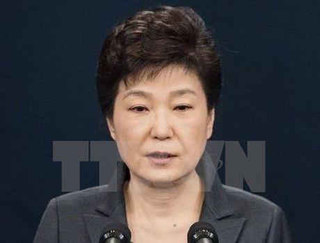 Tong thong Han Quoc Park Geun-hye xin tu bo quyen luc - Anh 1