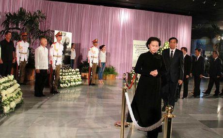 Chu tich QH Nguyen Thi Kim Ngan vieng ong Fidel Castro - Anh 3