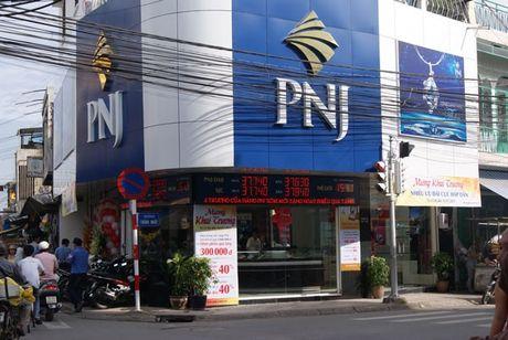 PNJ tinh phat hanh rieng le gan 10 trieu co phieu - Anh 1