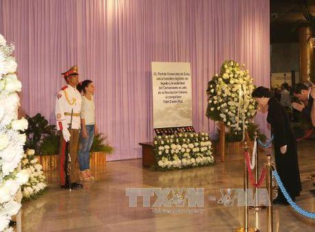 Chu tich Quoc hoi Nguyen Thi Kim Ngan vieng lanh tu Cuba Fidel Castro - Anh 2
