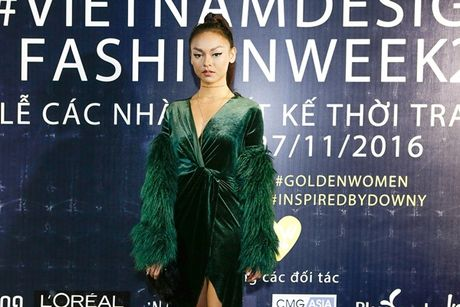 Dan sao Viet 'nao loan' tham do Vietnam Designer Fashion Week Fall - Winter 2016 - Anh 5