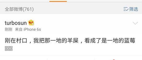 Ton Le, Dang Sieu hanh phuc du khong ngung chi choe - Anh 6