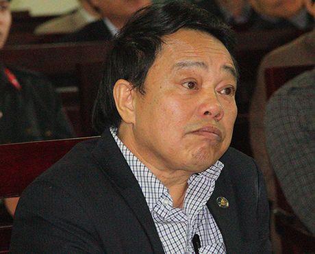 'Quan huyen' hau toa vi gian lan boi thuong dat du an Formosa - Anh 2