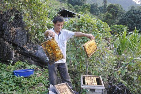 Ong ngoai lam hai ong noi o Ha Giang - Anh 2